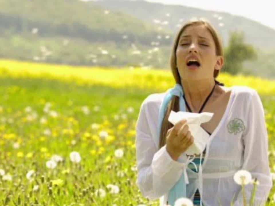 Helping Allergies with Chiropractic Care